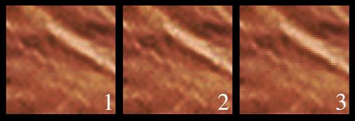 Una comparativa della zona ingrandita al 1.000%, con il bicubico (1), il bilineare (2) e il vicino più prossimo (3). Nel 3 sono molto visibili i pixel, nel 2 molto meno, nell'1 gli artefatti sono molto più ridotti.
