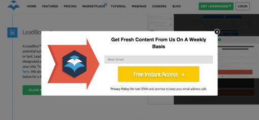 Esempio di pop-up di un sito.