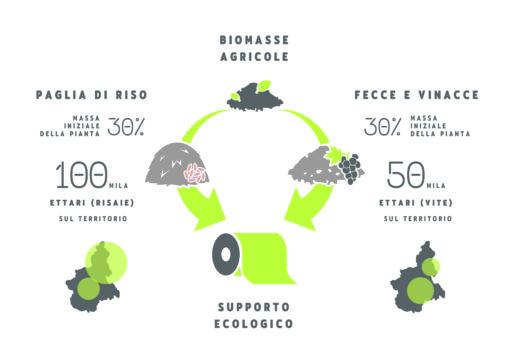 Possibili fonti da cui ottenere biomasse locali per la produzione di etichette compostabili.